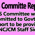 NPS Committee Report to be provided to NCJCM Staff Side